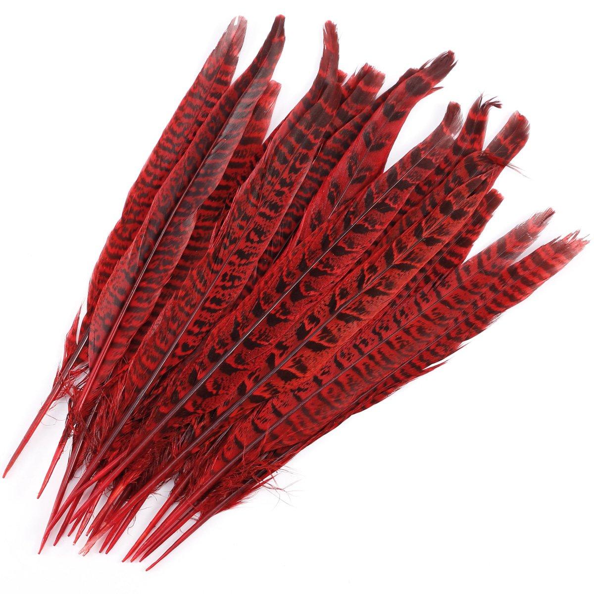 CLE DE TOUS - Pluma de Faisán (25-30cm) 20uds Pluma Natural para Labores Tocados Pelucas Sombrero Mascara Bolso Ropa Trajes de Fiesta Vestido Boda Canaval Halloween (Natural) Anladia