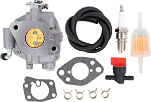 ApplianPar 846109 Carburetor for Briggs & Stratton 303442 303445 303446 303447 305442 305445 16 Hp Vanguard Engines with Fuel Filter Kit