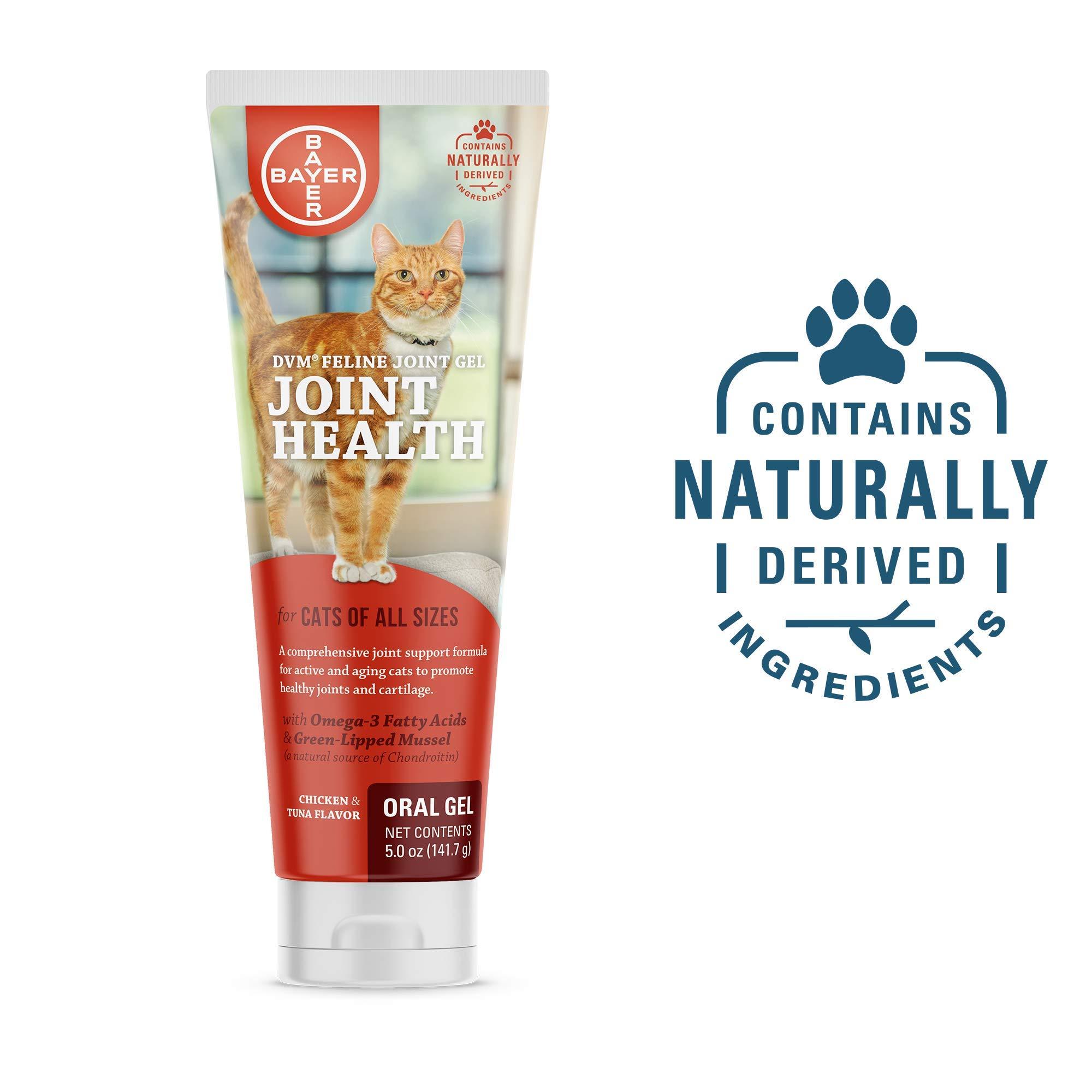 DVM Feline Joint Gel (5 oz.) by Bayer Animal Health