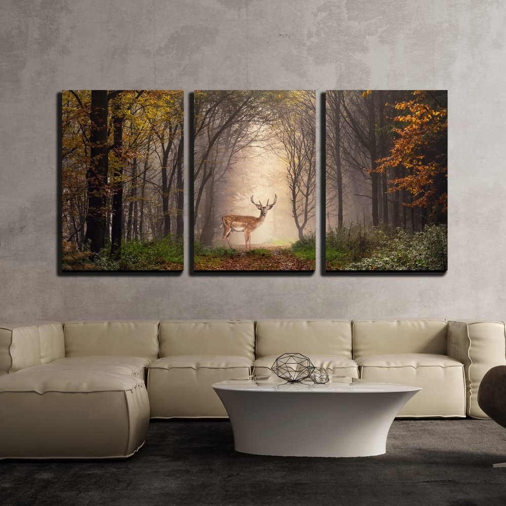 wall26 - 3 Piece Canvas Wall Art - Fallow Deer Standing in a Dreamy Misty Forest, with Beautiful Moody Light - Modern Home Art Stretched and Framed Ready to Hang - 24