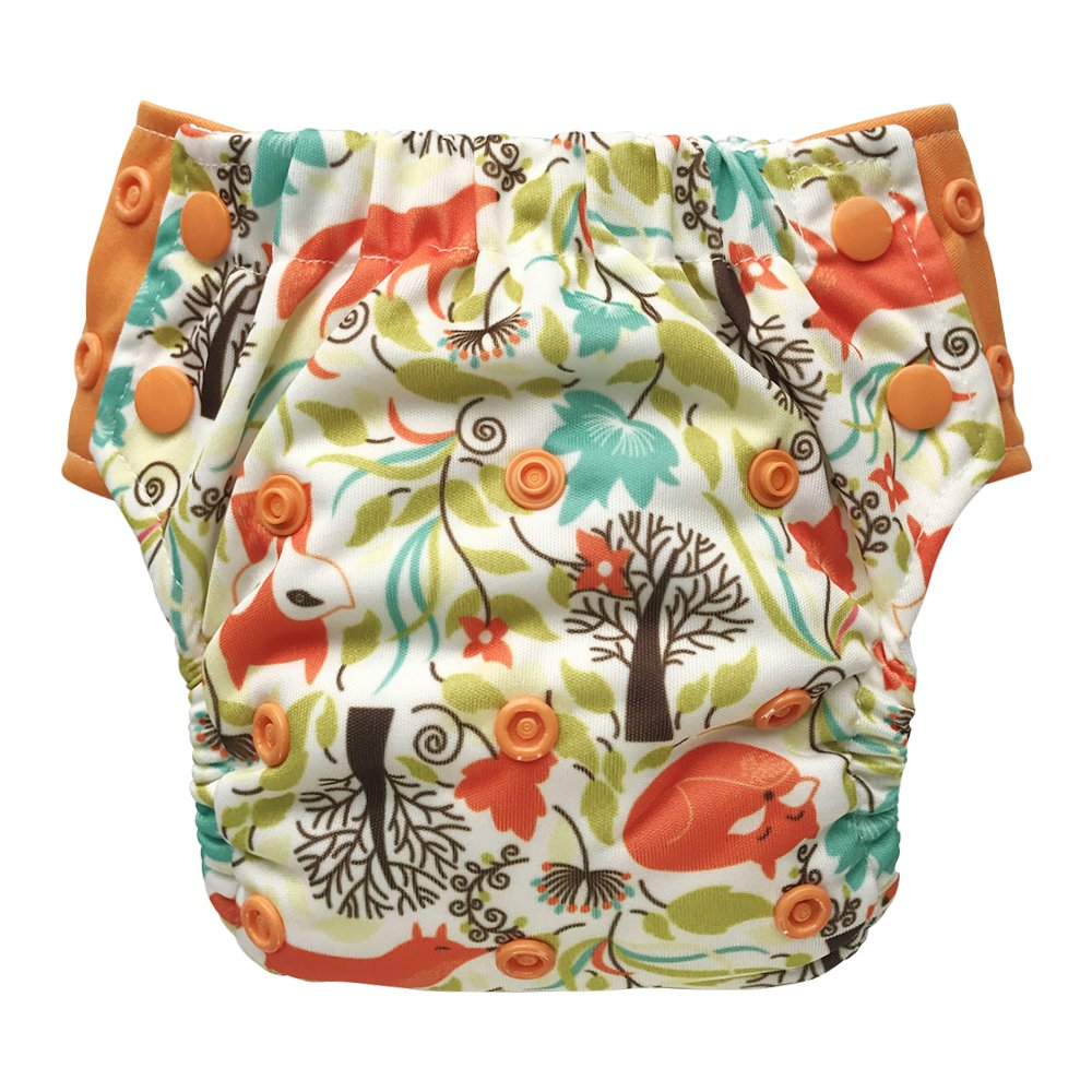 EcoAble Toddler Convertible 3-in-1 Cloth Diaper Hybrid w//Pocket /& Insert Everyday Use Swim or Potty Training Size 2//15-35Lb, Little Fox