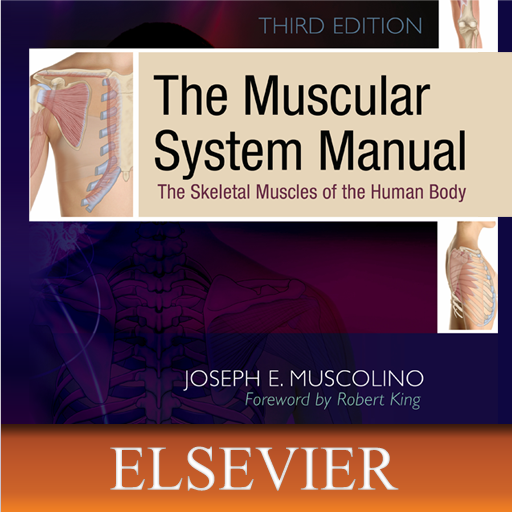 The Muscular System Manual: The Skeletal Muscles of the Human ()