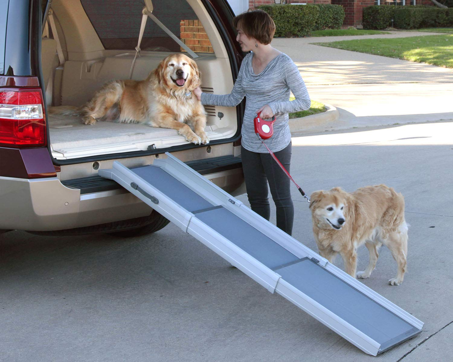 PetSafe Solvit Deluxe Tri-Scope Telescoping Pet Ramp or Carrying Case, 28 in. - 70 in., Portable Lightweight Aluminum Dog Ramp by PetSafe