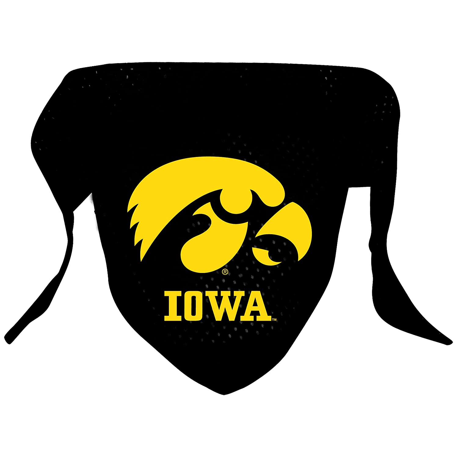 iowa hawkeye football coloring pages - photo#31