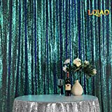 LQIAO Embroidered Sequin Fabric Backdrop Curtain 10FTx8FT Fluorescence Green Modern Window Drapes Sequin Curtain for living room/photo booth backdrop
