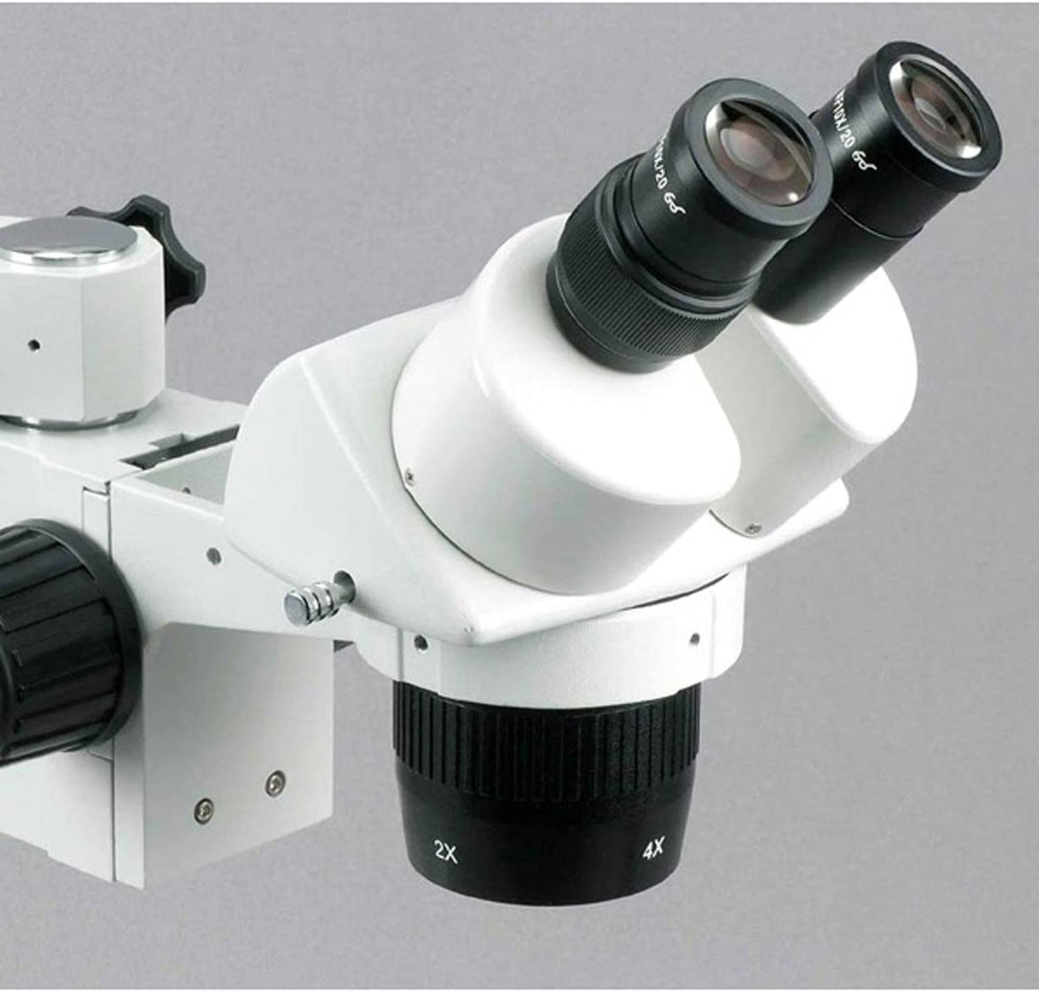 10X and 30X Magnification Single-Arm Boom Stand AmScope SW-3B13 Binocular Stereo Microscope WH10x Eyepieces 1X//3X Objective