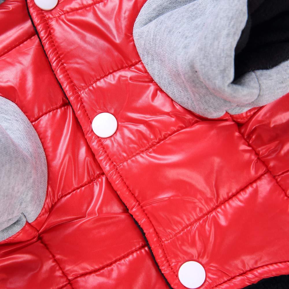 Gusspower Ropa de Abrigo Invierno Su/éter c/álido c/ómodo Chaqueta Deportiva Traje para Mascotas Gato Perro Ropa para Mascotas