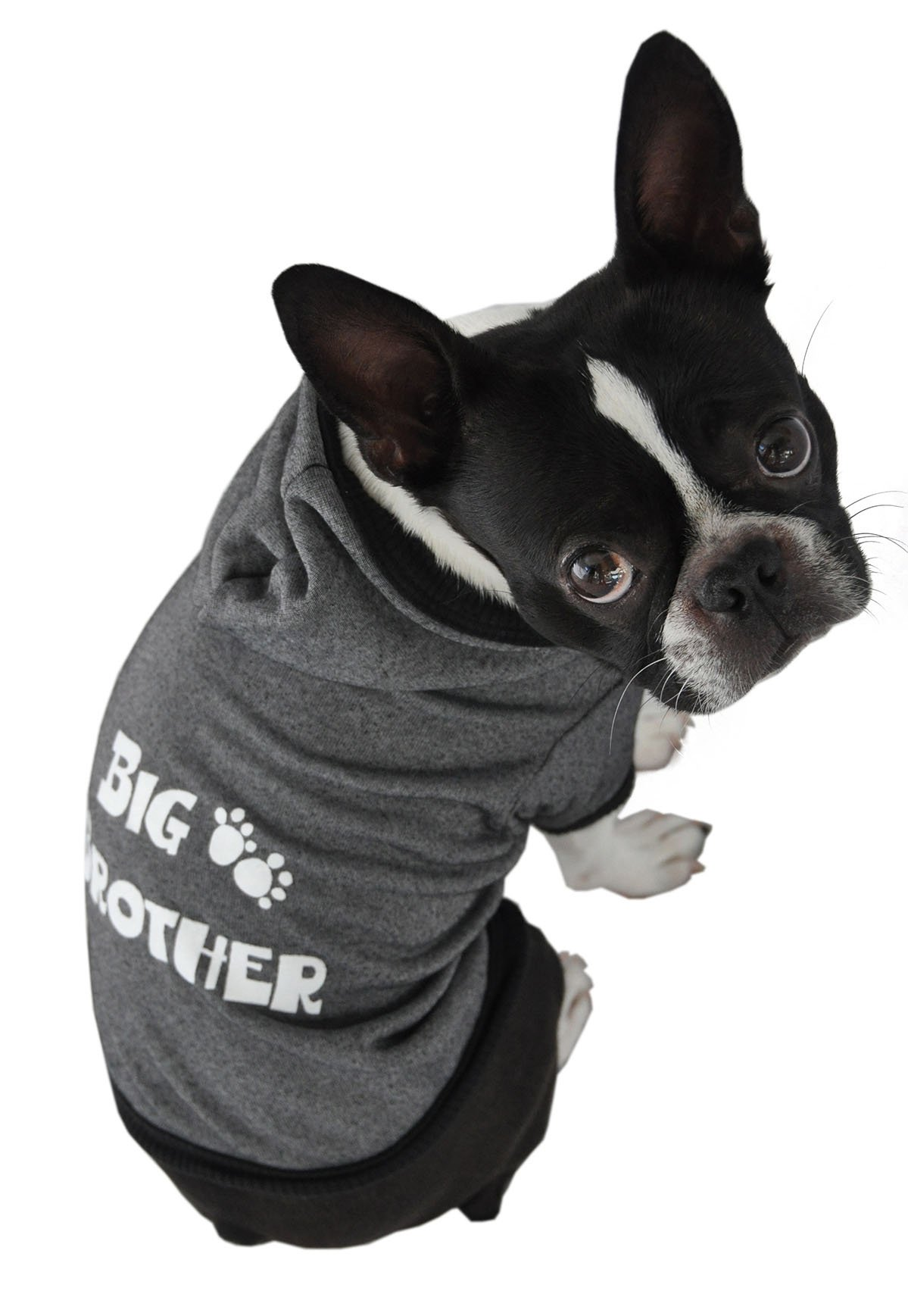Ruff Ruff and Meow Dog Hoodie, Big Brother, Black, Small by Ruff Ruff and Meow