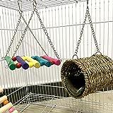 squirrel hamster sugar glider hammock 3 piece set