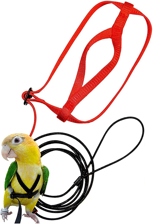 Kit de arnés ajustable para pájaros, arnés y correa ajustable antimordedura, apto para loros, cacatúas, guacamayos, cacatúas, reptiles