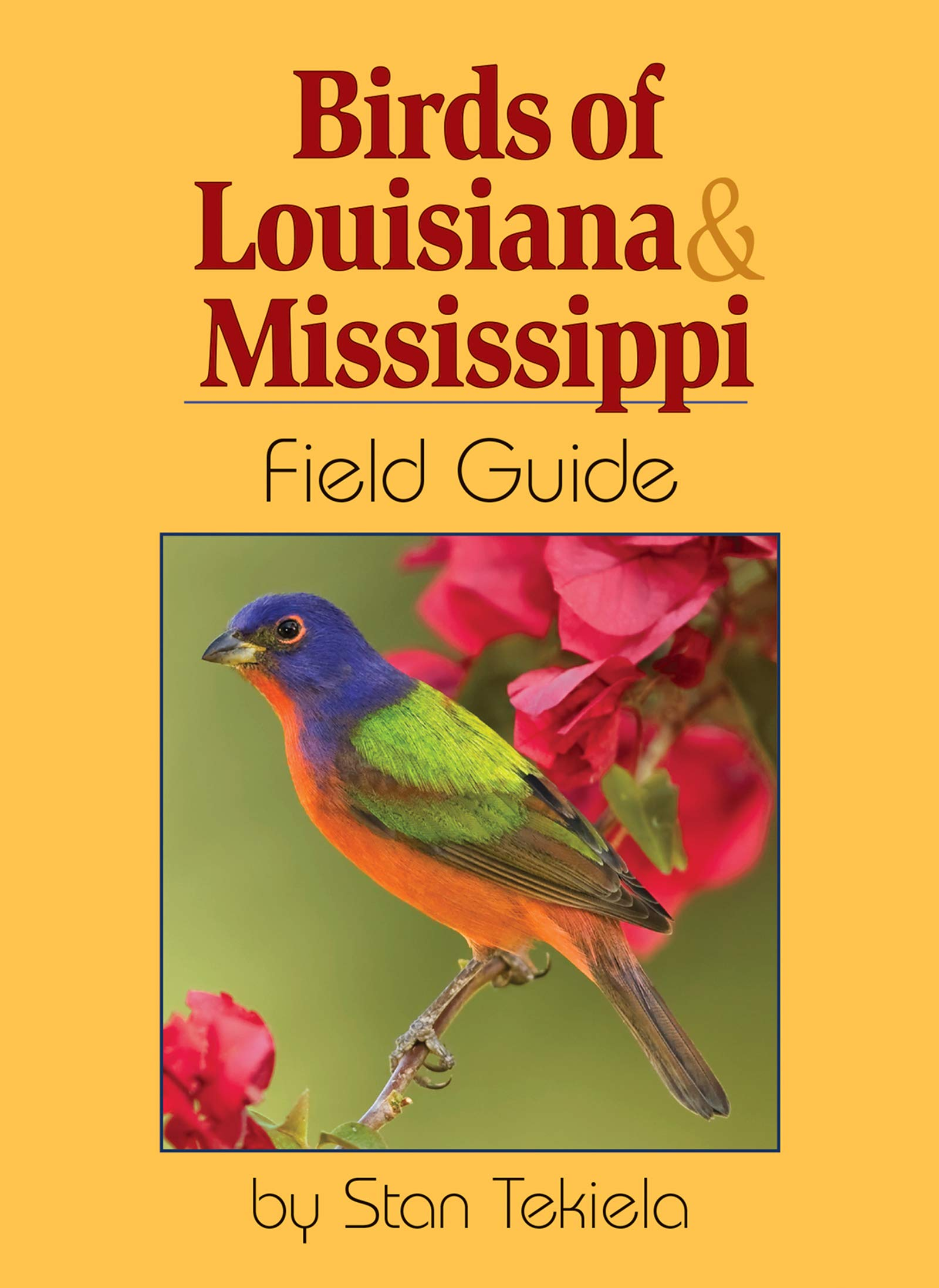 Guide to sex north mississippi