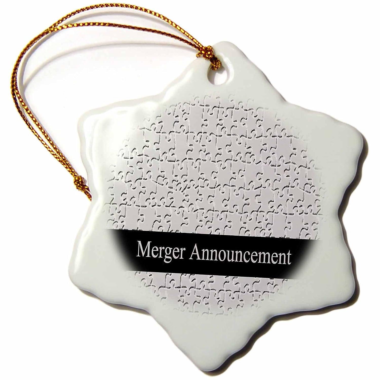 Puzzle Snowflake Ornament 3 Business 3dRose Merger Announcement