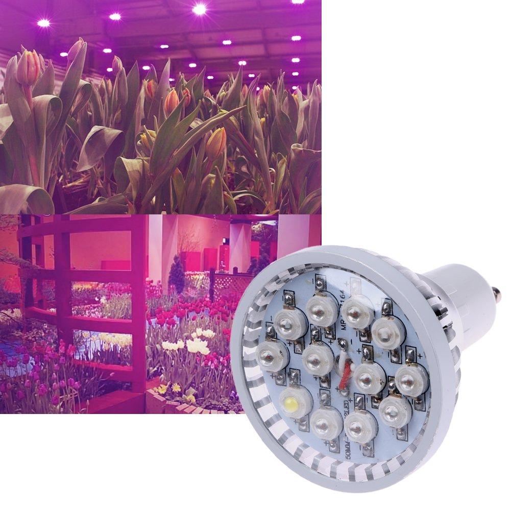 Amazingdeal365/AC85//à 265/V 24/W 12/Perles de croissance v/ég/étale lumi/ère GU10