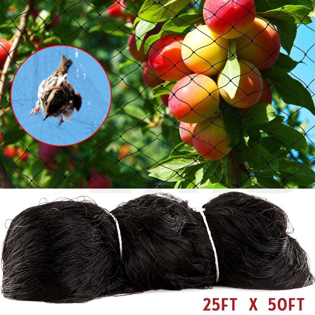Anti Pájaro red de malla de jardín pájaros para árboles frutales ...