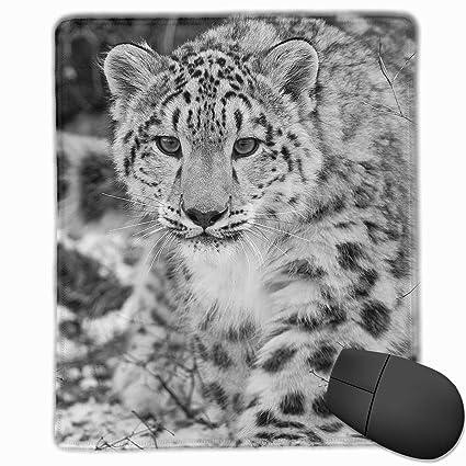 c96d126b68601 Amazon.com : Funny Snow Leopard Animals Mouse Pad Computer & PC Work ...