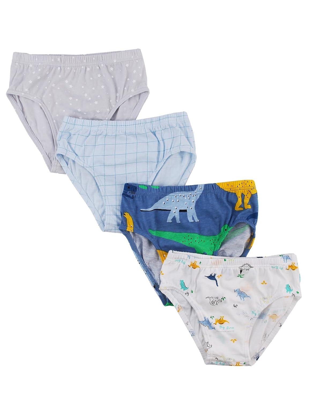 UniFriend Boys Assorted Briefs-4-Pack Set Tyranno Set