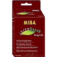 MINA ibrow Henna Burgundy Tinting kit- | Long Lasting Upto 6 Weeks| Spot Colouring Effect