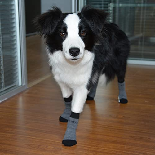Find The Best Dog Socks And Shoes Available In The Market Pets - Dog booties for hardwood floors