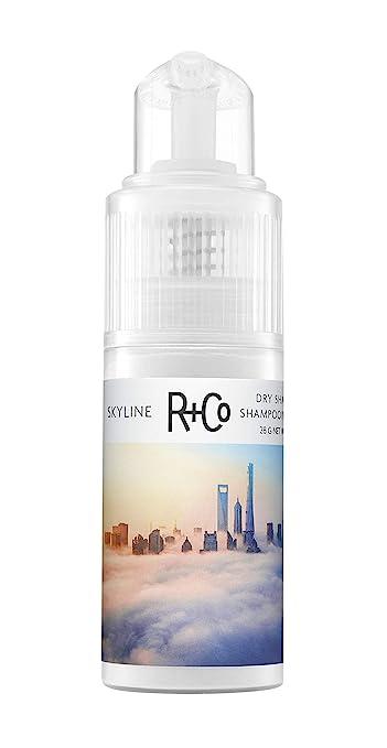 Amazon.com: R+Co Skyline Dry Shampoo Powder, 1.0 OZ.: Premium Beauty