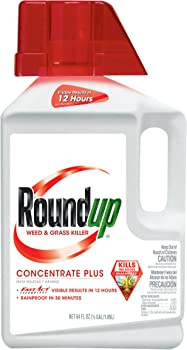 Roundup Weed and Grass Killer 1/2-Gallon Concentrate Plus