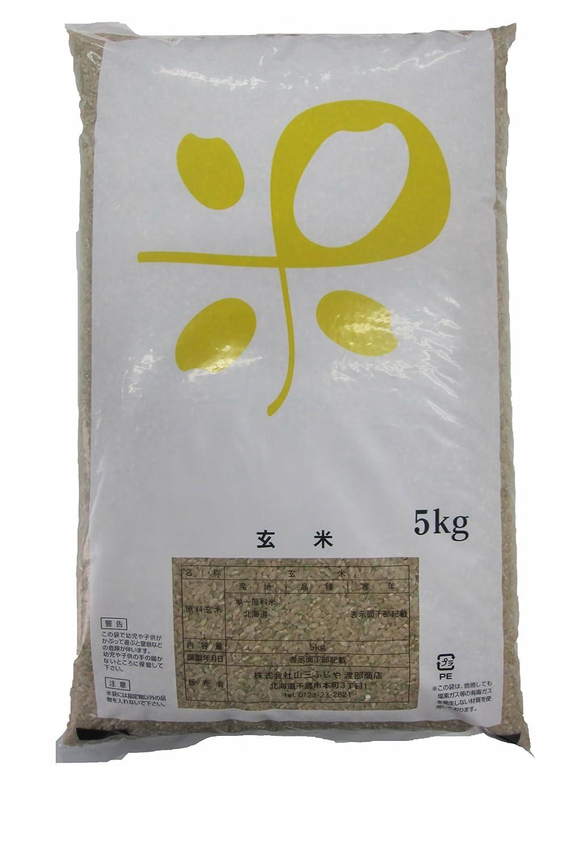 平成29年産 新米雨竜町 藤江さんの ゆめぴりか【玄米】