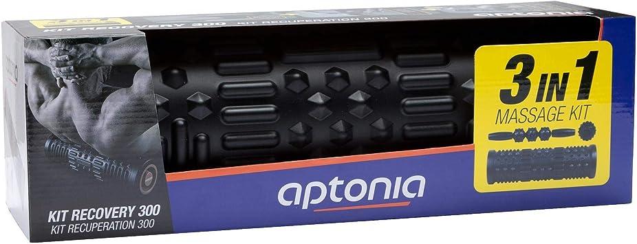 Aptonia Kit Recovery 300 - Kit de reparación para Ordenador ...