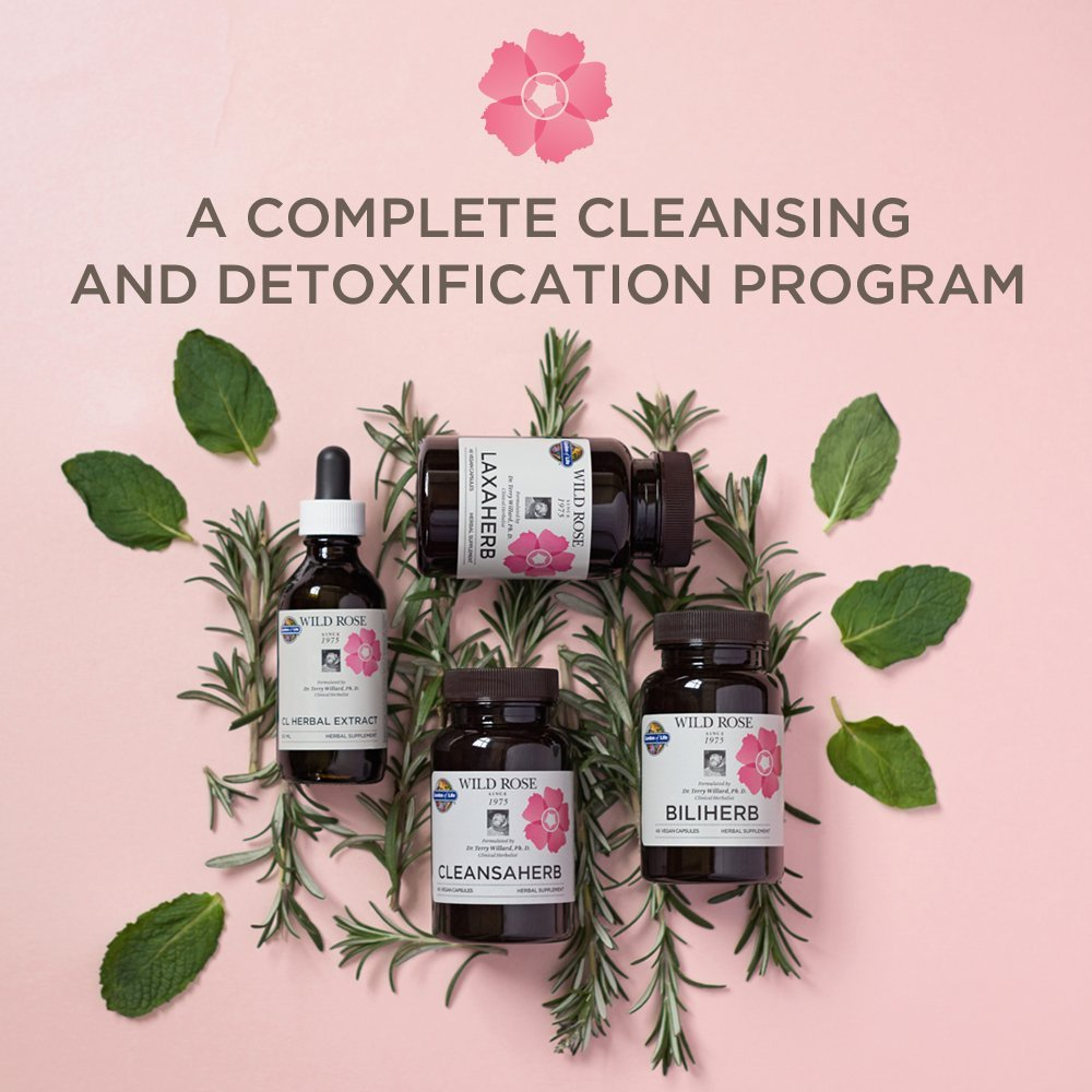 Garden of Life 12 Day Detox Cleanse - Wild Rose Herbal D-Tox Kit (12 Day) by Garden of Life (Image #3)
