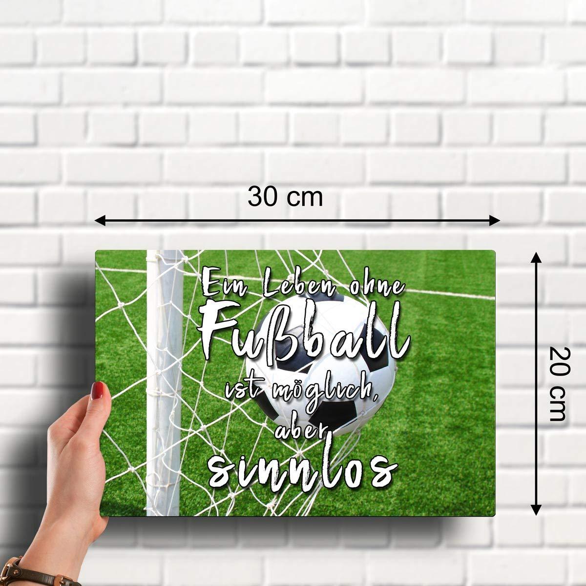 Ich bin Erzgebirge Fan Fußball 20 x 30 cm Deko Spruch Blechschild 1661