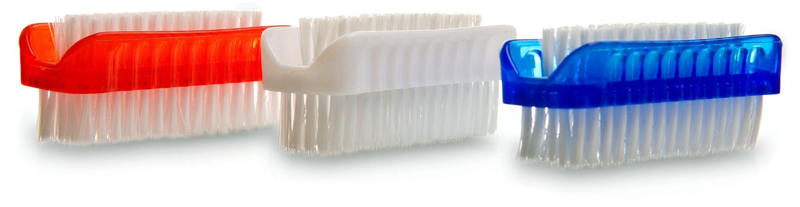 amazon com   kingsley colored plastic nail brush brush   fingernail brush   beauty