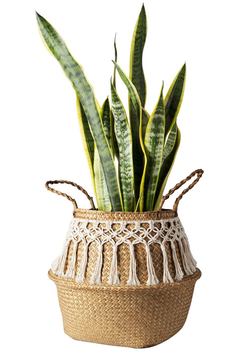 Mkono 2 Pcs Seagrass Belly Basket Plant Pot Cover Laundry Storage Toy Organizer with Macrame Wrap