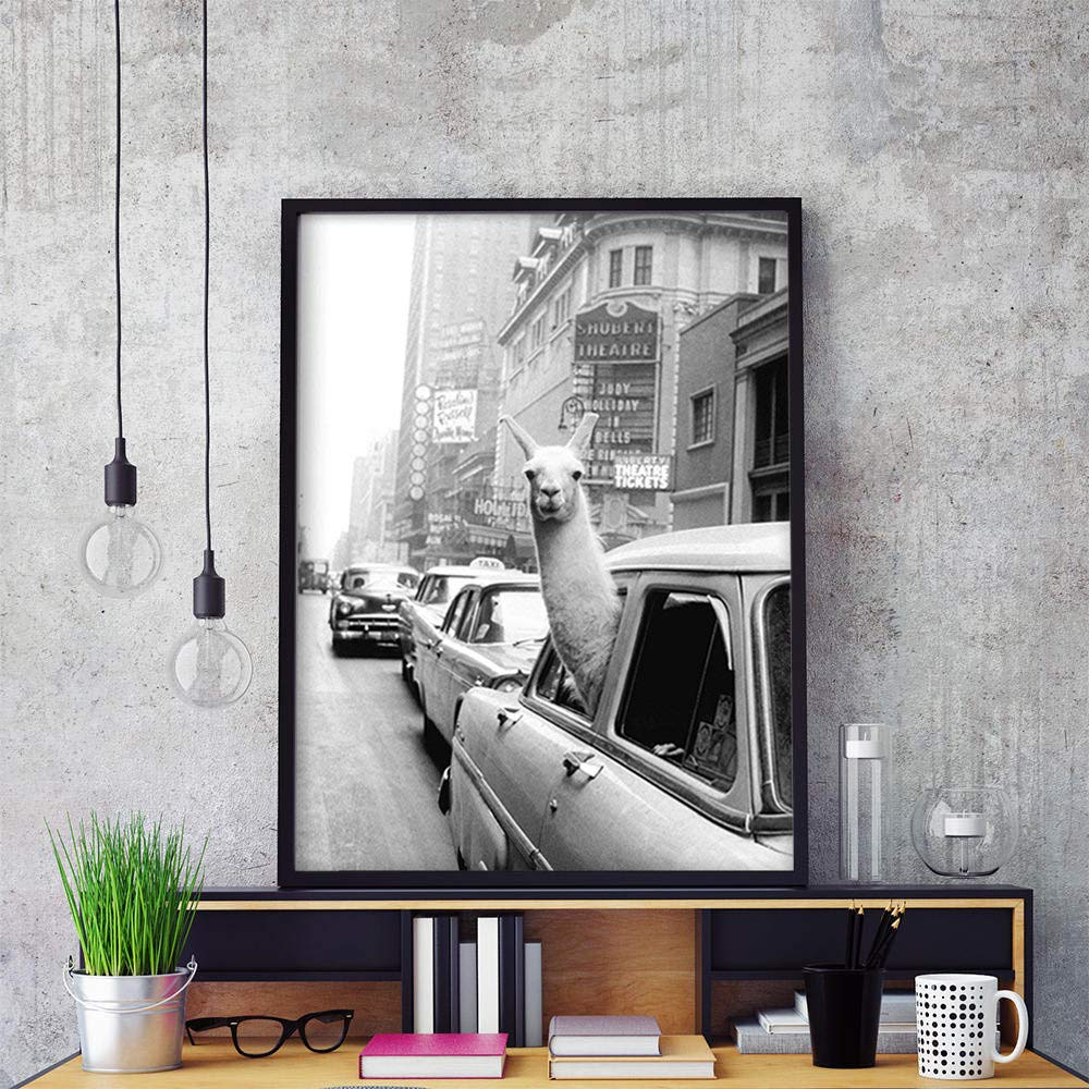 Alpaca Vintage Poster Black White Animal Llama in the Taxi Canvas Wall Art Print