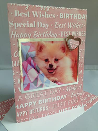 Amazoncom Handmade Pomeranian Dog Happy Birthday Greetings Card