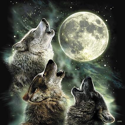 30e2c450e57 Amazon.com  Three Wolf Moon Refrigerator Magnet