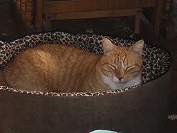 Amazon.com : K&H Manufacturing Pet Bed Warmer Large 11