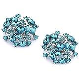 ElegantPark AM Women's Wedding Party Prom Decorative Crystals Clutchs Dress Hat Shoe Clips 2 Pcs
