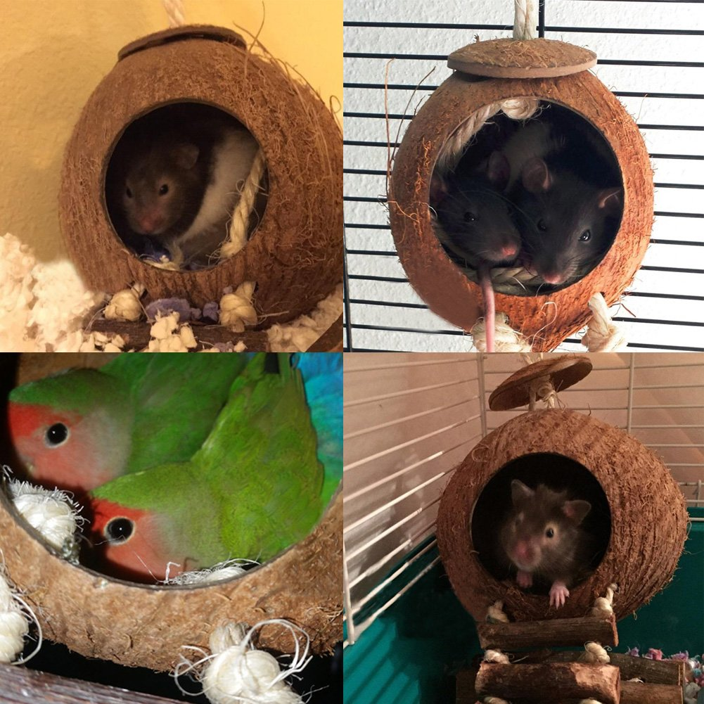 OMEM Coconut Shell Bird House,Hamster Cage and Hideouts with Ladder,Bird Cage Toy by OMEM (Image #6)