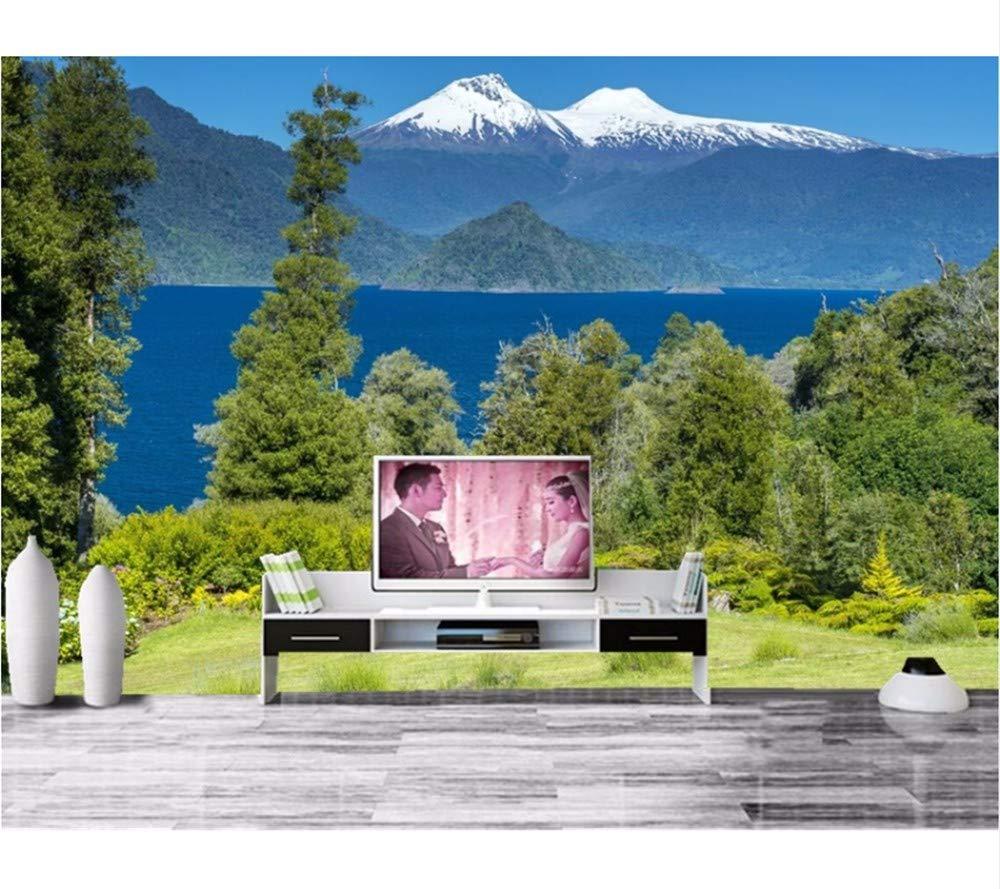 Weaeo Murales Personalizados, Chile Paisaje Parques Montañas Ríos ...