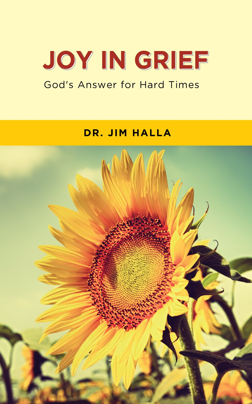 Read Online Joy in Grief: God's Answer for Hard Times pdf