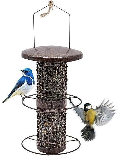 Sorbus Bird Feeder – Circular Perch Hanging Feeder for Finches Bird Seed  and More, Premium - Amazon.com : Sorbus Bird Feeder - Circular Perch Hanging Feeder For