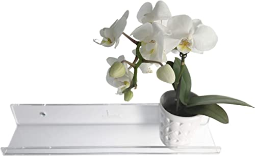 Lumini Slim Acrylic Floating Display Shelves Set of 2, 13 inch Modern Minimalist D cor Transparent Wall Ledges for Photos, Art, Vinyls, and More