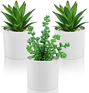 Hopewood Artificial Succulent Plants in pots Mini Fake Potted Plant in White Vase Set of 3