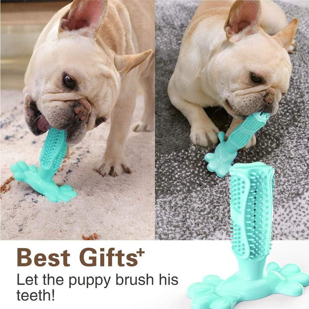 Youyababay Dog Brushing Stick, Big Dog Cepillo de Dientes Perro ...