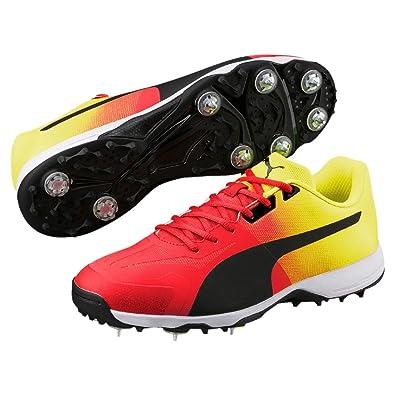 217e7b4fdbf Puma Men's Evospeed 18.1 Crickspikefade Cricket Shoes: Buy Online at ...