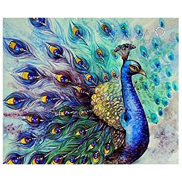 b356dc2a1c Image Unavailable. Image not available for. Color: TOOGOO Diamond Painting  Peacock Flaunting Its Tail 5D Diamond DIY Painting Craft Kit Home Decor