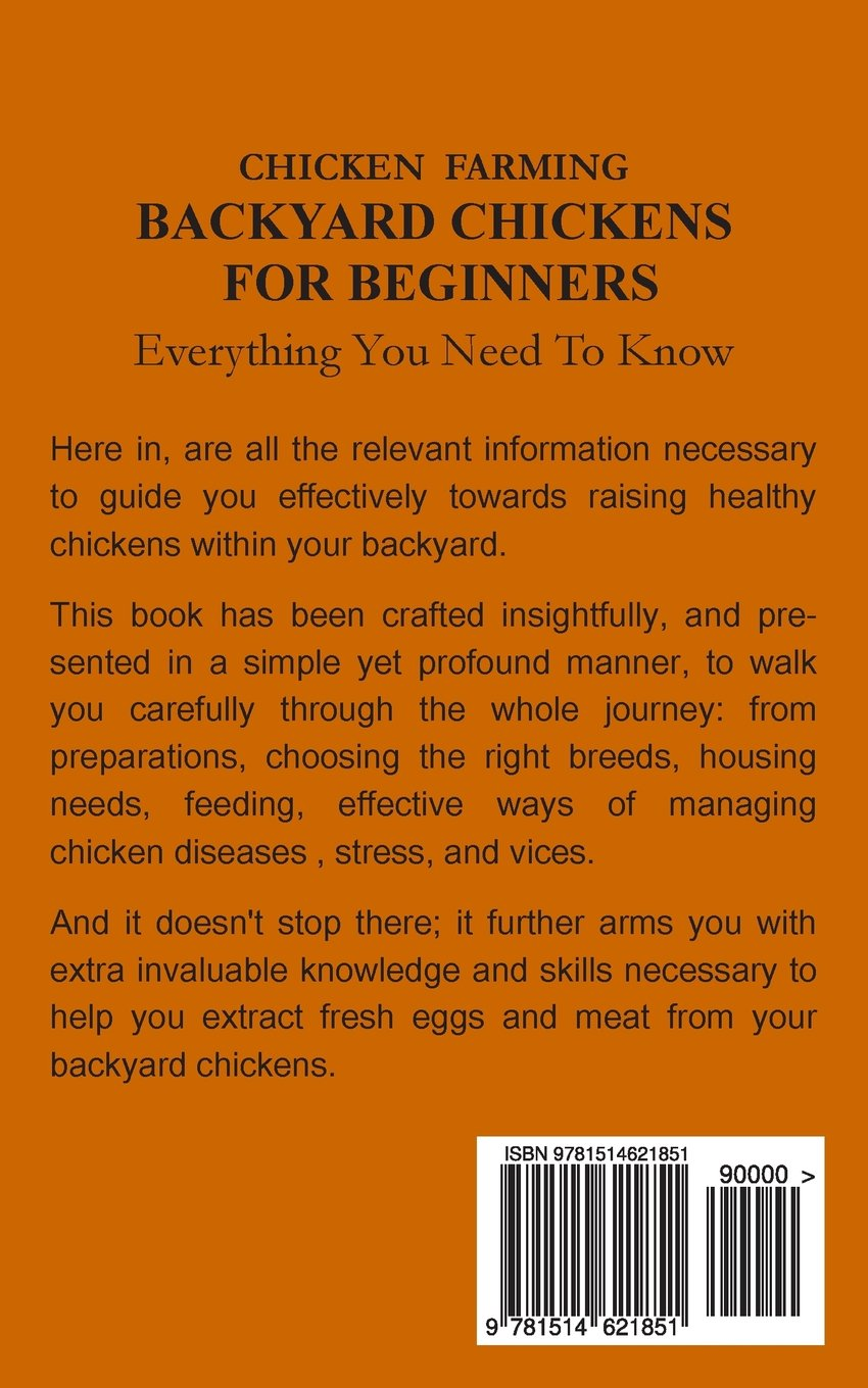 chicken farming backyard chickens for beginners everything you