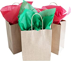TOMNK 12 Gift Bags Kraft Gift Bags Bulk Small Goody Bags with Tissue Paper for Party Favors, Wrapping Presents, Holiday Treat Box