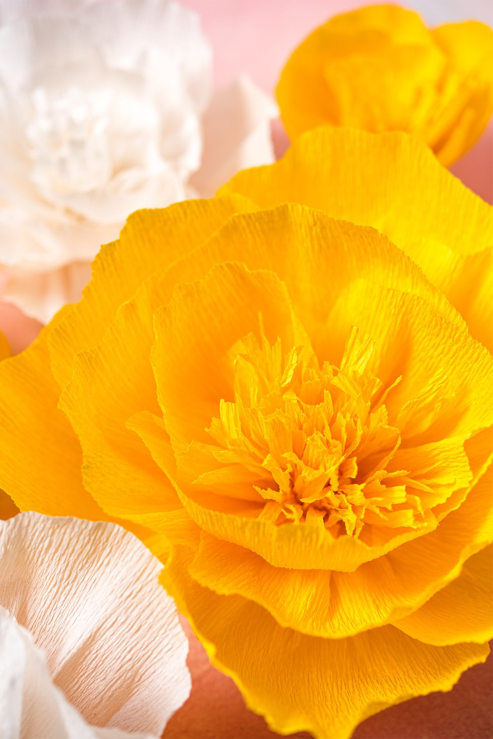 Paper Flower Decorations, Giant Paper Flowers (Yellow, White, Set of ...