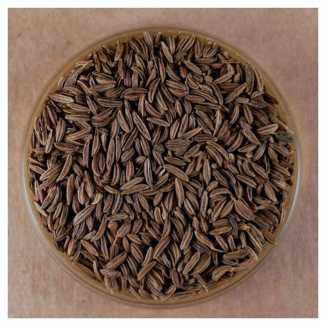 Caraway Seeds, Whole (8 oz) by Spices For Less (Image #1)