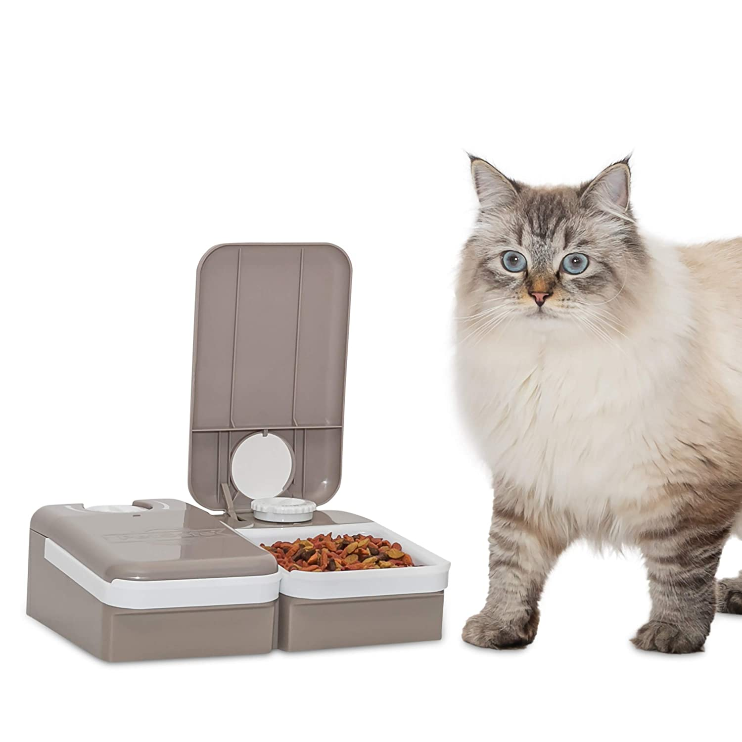 Pet Supplies : PetSafe 2-Meal Automatic Dog and Cat Feeder, Dispenses Dog  Food or Cat Food : Pet Self Feeders : Amazon.com