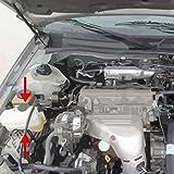 92-96 Lexus ES300 Toyota Camry 95-96 Avalon Coolant